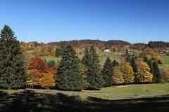 Reizender Wanderweg nannte ` ` Ibacher Panoramaweg nahe Oberibach, welches die bunte Landschaft im südlichen Schwarzen zeigt Lizenzfreie Stockbilder