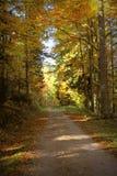 Reizender Wanderweg nannte ` ` Ibacher Panoramaweg nahe Oberibach, welches die bunte Landschaft im südlichen Schwarzen zeigt Stockbild