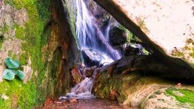 Reizender Wasserfall Algerien Stockbilder