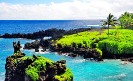 Reizendes Hawaii stockfoto