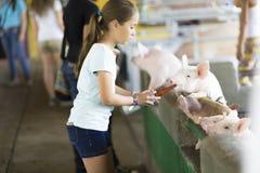 Reizendes Mädchen zieht Schwein ein Stockfoto