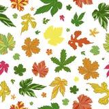 Reizendes Muster von Blättern Endloser Hintergrund Stockfoto