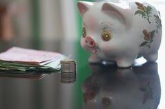 Reizendes Sparschwein schaut Geld stockfotografie