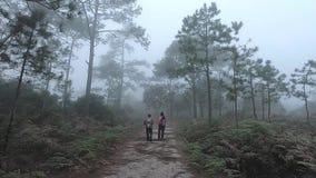 Reiziger die in bos met mistachtergrond lopen Paar die in concept van de aard het langzame motie lopen stock video