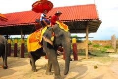 Reiziger die op de olifant berijdt royalty-vrije stock fotografie