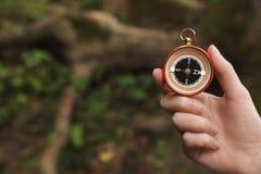 Reiziger die richting met kompas zoeken in wildernis, royalty-vrije stock afbeeldingen