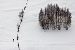Reiziger in het de winterland stock foto's