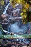 Reiziger in tropisch regenwoud stock foto's