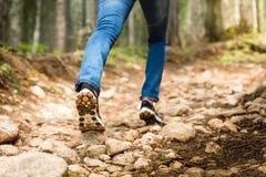 Reiziger voor voetpad in het bos Stock Foto