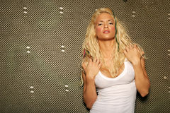 Reizvolle blonde Frau Lizenzfreie Stockbilder
