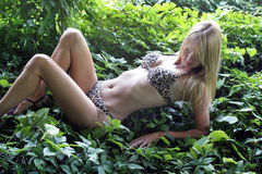 Reizvolle Blondine in Leopard-drucken Bikini (4) Stockfoto