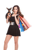 Reizvolle Einkaufenfrau mit Hund Stockfotos