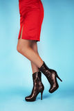 Reizvolle Fahrwerkbeine in den Schuhen Lizenzfreie Stockfotografie