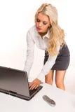 Reizvolle Geschäftsfrauen Stockfotografie