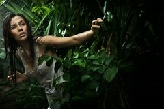 Reizvolle junge Brunetteschönheit in einem Regenwald Stockfotos