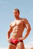 Reizvoller Erbauer der muskulösen Karosserie Stockbild