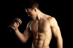 Reizvoller muskulöser Mann mit Dumbells stockfotografie