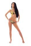 Reizvolles Baumuster im Bikini lizenzfreies stockbild