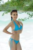 Reizvolles Bikinibaumuster Lizenzfreie Stockfotografie
