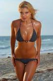 Reizvolles Bikinimädchen Lizenzfreies Stockbild