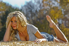 Reizvolles blondes Baumuster Lizenzfreie Stockbilder