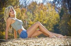Reizvolles blondes Baumuster Stockfotos
