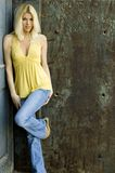 Reizvolles blondes Baumuster Stockfoto
