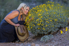 Reizvolles blondes Cowgirl Lizenzfreie Stockbilder