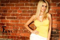 Reizvolles blondes Frauenart und weisebaumuster Lizenzfreies Stockbild