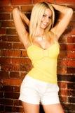 Reizvolles blondes Frauenart und weisebaumuster Lizenzfreie Stockbilder