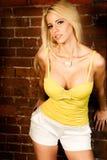 Reizvolles blondes Frauenart und weisebaumuster Stockfotos