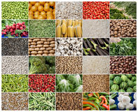 Rejilla de verduras y de frutas Imagen de archivo libre de regalías