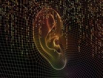 Rejilla del oído Fotografía de archivo libre de regalías