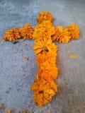 Rejs kwiaty Obrazy Royalty Free