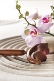Rejuvenating massage at spa Royalty Free Stock Image