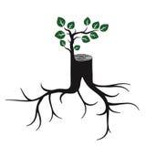 Rejuvenezca, tronco de árbol y brote Imagen de archivo libre de regalías