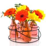 Rek met bloemen in flessen stock afbeeldingen
