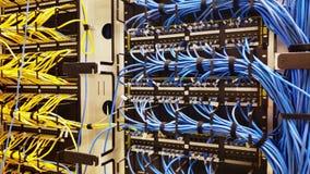 Rek met generische ethernetcat5e kabels stock footage