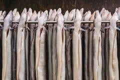 Rek met verse gerookte paling in Nederland Royalty-vrije Stock Foto