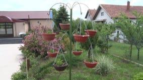 Rek voor decoratieve bloemen in de tuin stock videobeelden
