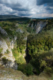 Reka Gorge, Škocjan Caves Regional Park, Slovenia Stock Images