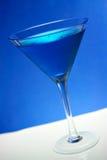 rekin błękitny Zdjęcia Stock