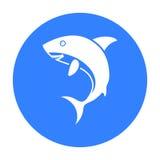 Rekin ikony czerń Upala zwierzęcą ikonę od dużego zwierzęcia czerni Obraz Stock