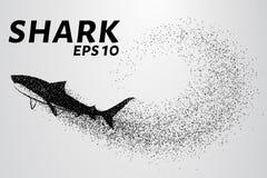 Rekin od cząsteczki Sylwetka rekin jest mali okręgi również zwrócić corel ilustracji wektora Obrazy Royalty Free
