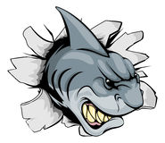 Rekin rozdziera przez tła Obrazy Royalty Free
