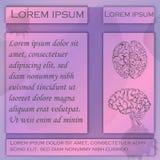 Reklamblad för människan Brain Studies royaltyfri illustrationer