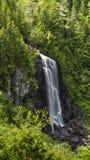 reko snedstegnedgångar dyker upp från skog Arkivfoto