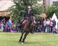 rekonstruktion för riddare för stridfestival historisk Royaltyfri Fotografi