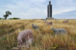 Rekord- statyfårherde av Frumushika-novan, Ukraina Royaltyfri Bild