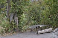 Rekreationsområde på banken av floden Mertvovod arkivfoto